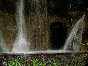 Cave I found in a rain forrest in Cuba